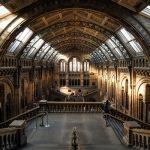 4 מוזיאונים בלונדון - אתרי חובה!